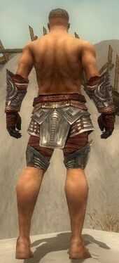 Warrior Asuran Armor M gray arms legs back.jpg