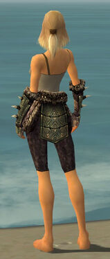 Warrior Elite Charr Hide Armor F gray arms legs back.jpg