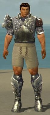 Warrior Templar Armor M gray chest feet front.jpg