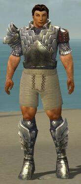 Warrior Templar Armor M gray chest feet front.jpg