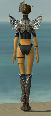 Assassin Asuran Armor F gray chest feet back.jpg