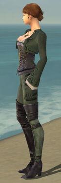 Mesmer Rogue Armor F gray side.jpg