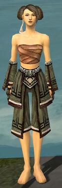 Monk Kurzick Armor F gray arms legs front.jpg