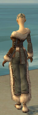 Monk Norn Armor F gray back.jpg