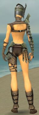 Warrior Elite Gladiator Armor F gray back.jpg
