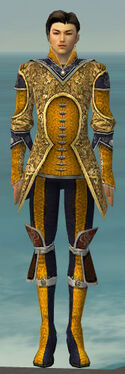 Elementalist Canthan Armor M dyed front.jpg