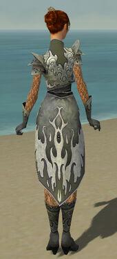 Elementalist Elite Flameforged Armor F gray back.jpg