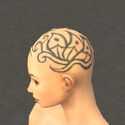 Monk Elite Canthan Armor F gray head side.jpg