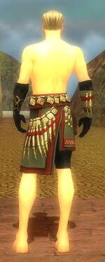 Ritualist Elite Canthan Armor M gray arms legs back.jpg