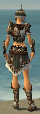 Warrior Vabbian Armor F gray back.jpg