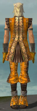 Elementalist Istani Armor M dyed back.jpg