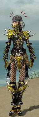 Necromancer Elite Luxon Armor F dyed front.jpg
