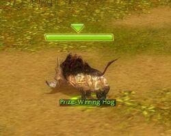 Pwhog.jpg