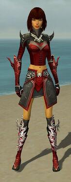 Assassin Deldrimor Armor F dyed front.jpg