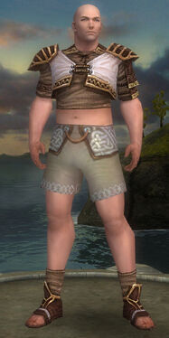 Monk Elite Canthan Armor M gray chest feet front.jpg