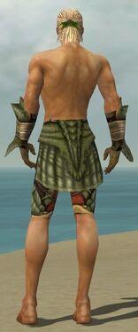 Ranger Elite Drakescale Armor M gray arms legs back.jpg