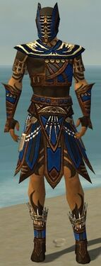 Ritualist Monument Armor M dyed front.jpg