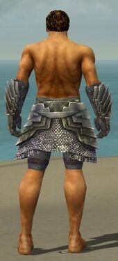 Warrior Templar Armor M gray arms legs back.jpg