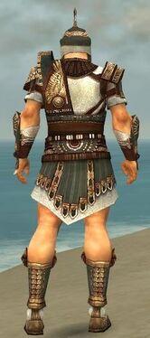Warrior Vabbian Armor M gray back.jpg