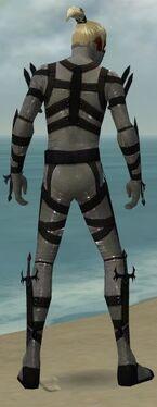 Assassin Obsidian Armor M gray back.jpg