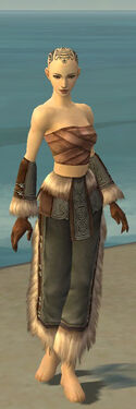 Monk Norn Armor F gray arms legs front.jpg