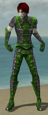 Necromancer Ascalon Armor M dyed front.jpg