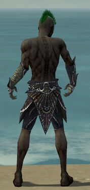 Necromancer Elite Necrotic Armor M gray arms legs back.jpg