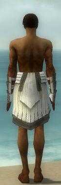 Paragon Ancient Armor M gray arms legs back.jpg