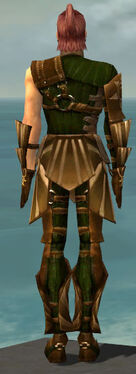 Ranger Sunspear Armor M dyed back.jpg