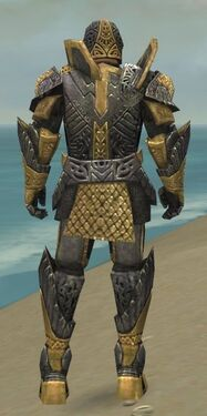 Warrior Elite Platemail Armor M dyed back.jpg