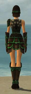 Warrior Shing Jea Armor F dyed back.jpg
