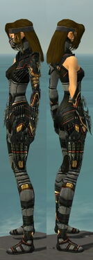 Assassin Elite Kurzick Armor F gray side.jpg