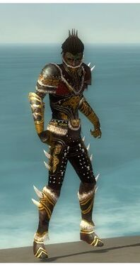 Necromancer Norn Armor M dyed front.jpg