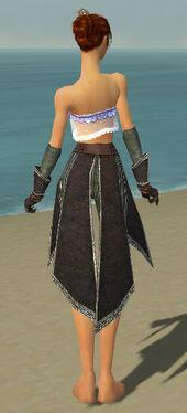 Elementalist Ancient Armor F gray arms legs back.jpg