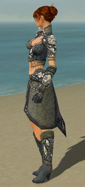 Elementalist Elite Stoneforged Armor F gray side.jpg