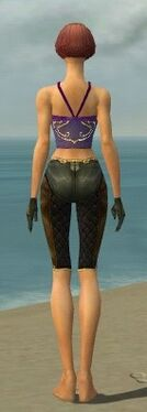 Mesmer Ancient Armor F gray arms legs back.jpg
