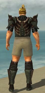 Warrior Elite Dragon Armor M gray chest feet back.jpg