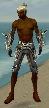 Assassin Asuran Armor M gray arms legs front.jpg