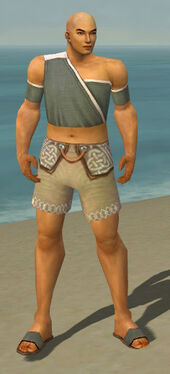 Monk Ascalon Armor M gray chest feet front.jpg
