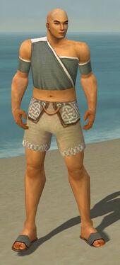 Monk Ascalon Armor M gray chest feet front.jpg