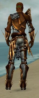 Ranger Elite Sunspear Armor M dyed back.jpg