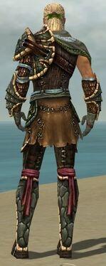 Ranger Luxon Armor M gray back.jpg