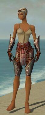 Warrior Asuran Armor F gray arms legs front.jpg
