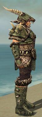 Warrior Elite Charr Hide Armor M gray side.jpg