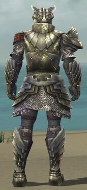 Warrior Templar Armor M gray back.jpg