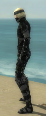 Assassin Kurzick Armor M gray side.jpg