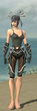 Necromancer Elite Kurzick Armor F gray arms legs front.jpg