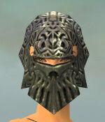 Warrior Elite Platemail Armor F gray head front.jpg