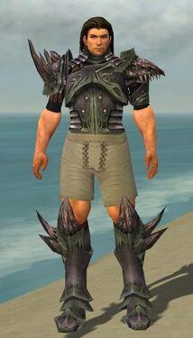 Warrior Primeval Armor M gray chest feet front.jpg