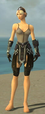 Warrior Silver Eagle Armor F gray arms legs front.jpg